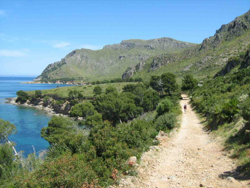 Lonesome path on Mallorca