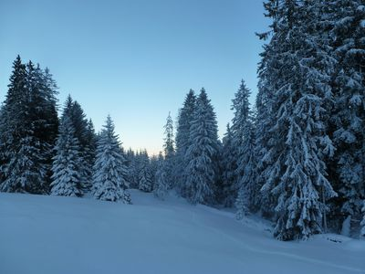 Winter scene in Toggenburg