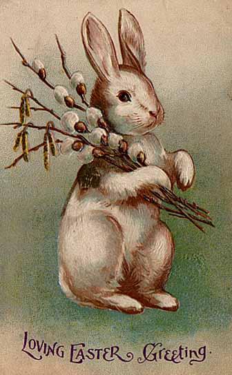 Easter_bunny_postcard_1907