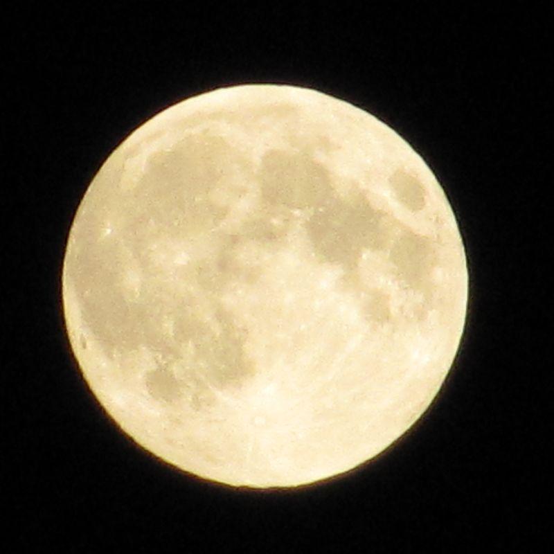 2014-09-08_20.27.26_moon