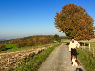 Walk in the Odenwald