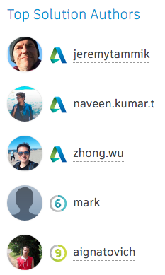 Top solution authors